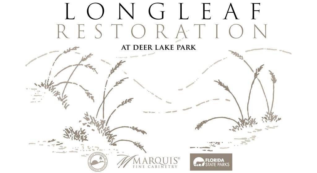 Marquis-Community-Outreach-Longleaf-Flyer
