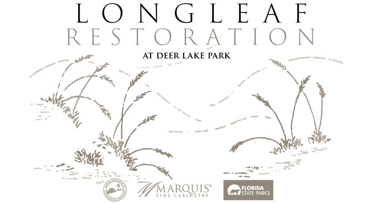 Marquis-Community-Outreach-Longleaf-Flyer